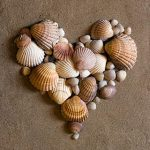 shell heart on sand